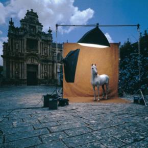 FOTOGRAFÍA // Peter MüllerPeter