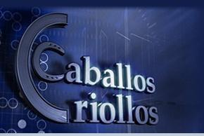 TV // Caballos CriollosTV