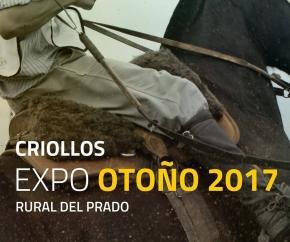 EXPOSICIONES // Expo OtoñoCriollos