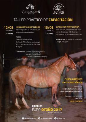 TALLER // Taller práctico deCapacitación
