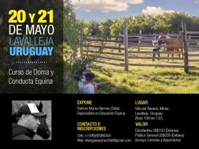 CURSOS // Curso de doma y ConductaEquina